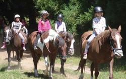 horsetrecking7