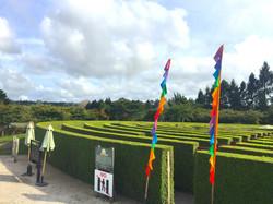 きれいに整備された緑の生垣迷路