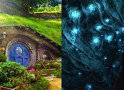 ホビット村・ワイトモ洞窟ツチボタルツアー