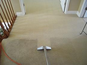 Carpet Cleaning Taunton