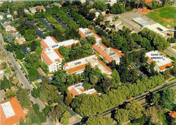 Garden Alameda