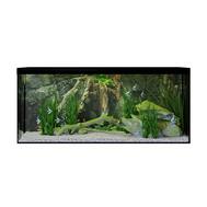 Aquarium With Fish (40x140x60 Cm)
