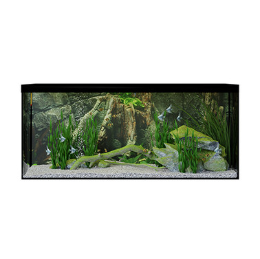 Aquarium With Fish (40x140x60 Cm)