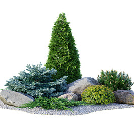 Garden Collection - Alpine Hill 01 Collection With Coniferous Trees ,Stones And Pebbles