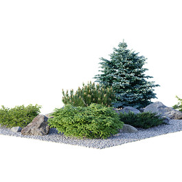 Garden Collection - Alpine Hill_02 Collection With Coniferous Trees,Stones And Pebbles