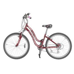 Stels Bike
