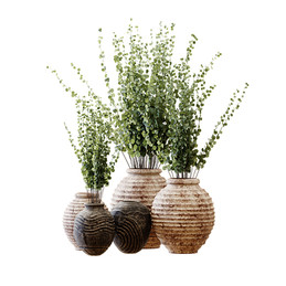 Decorative Clay Vases With Eucalyptus