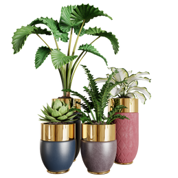 Interior Plants - Set Of 4 Plant