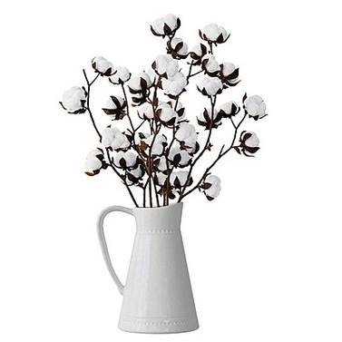 Cotton In Vase Home Decoration