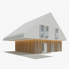 House - Modern House 15
