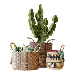 Basket Set 01 Decorations With Cactus And Pillow