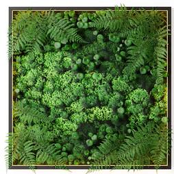 Deco Moss - Nature Moss Vegetal Wall Decoration.jpg