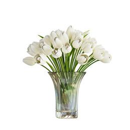 Light Tulips