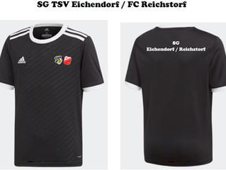 Reichstorf und Eichendorf bilden in G und F-Jugendbereich eine Spielgemeinschaft.