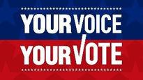da vote logo.jpg