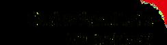 DTD_logo_V2-transparent.png