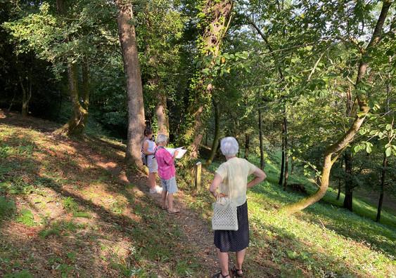 Visite guidée Bois de la Coudanne.jpg
