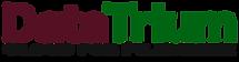 Logo DT v6.png