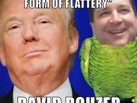 David Rouzer betrays our constitution, again.