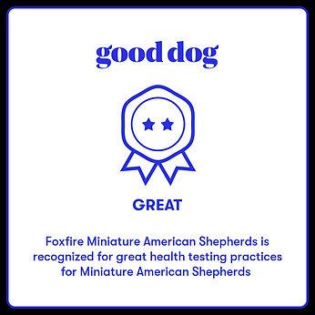 good dog.jpeg