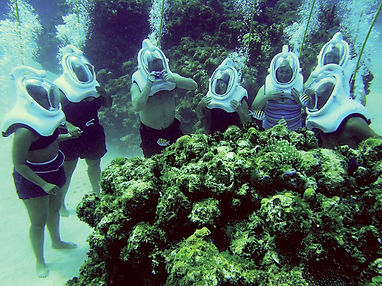 sea-trek-grand-cayman-grand-cayman-cayma