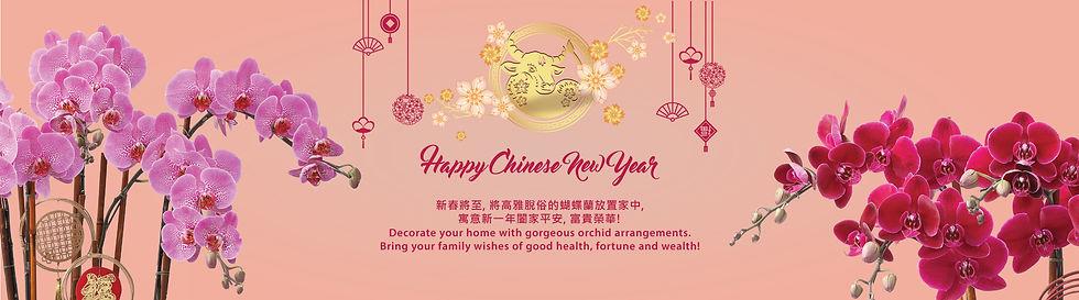 2021-CNY_website-banner5.jpg