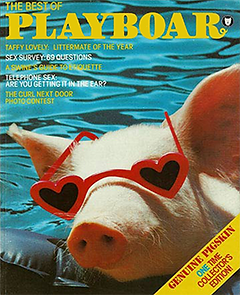 Front cover of Playboar old version