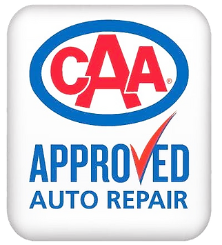 CAA Approved Rectangle.png