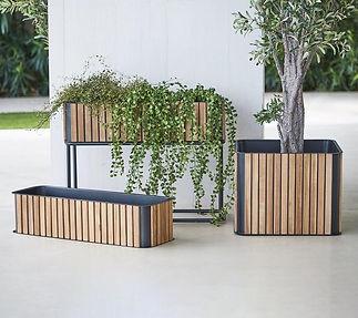 Cane Line Planters.jpg