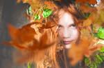 L'escargot Ivre Photography