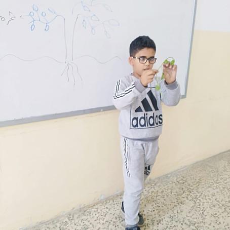 درس العلوم للصف الأول والثالث بإستخدام طريقة المعلم الصغير