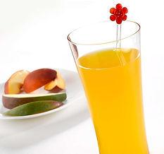 protidiet-liquid-concentrate-peach-mango