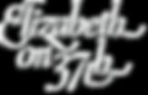 logo_E37_transparent_shadow - Copy.png