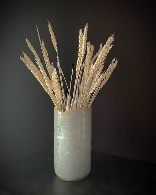 Bunch of dried whitewashed wheat
