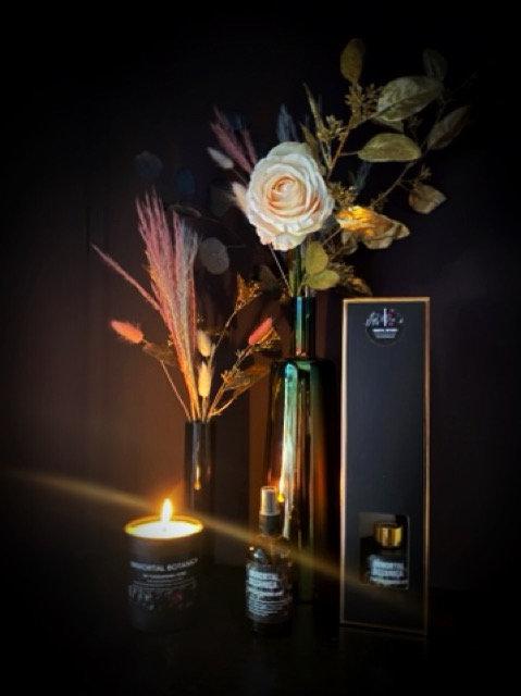 Immortal Botanica signature scent essentail oil calming Reed Diffuser