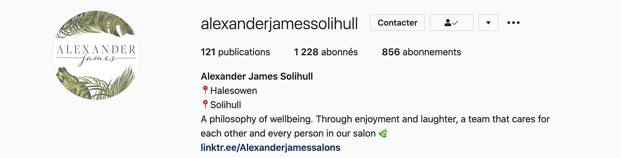 banner instagram alexander james