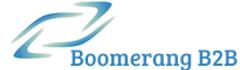 Boomerang B2B - logo.png