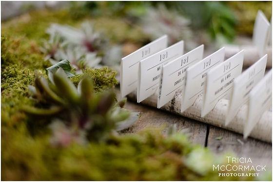 Mount-Wedding-Berkshires-Wedding-Photogr