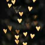 angele-kamp-z9snlR4f9os-unsplash.jpg