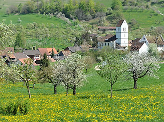 Foto_NOB_on_the_road_Oltingen_Frühling