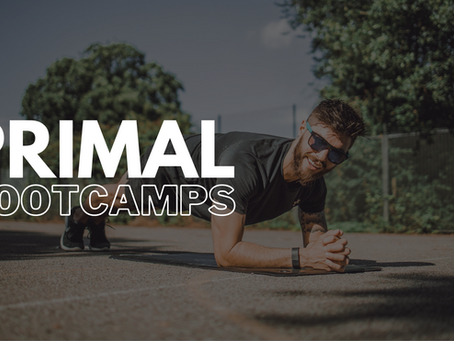 What Are Primal Bootcamps?