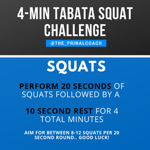 4 minute squat workout
