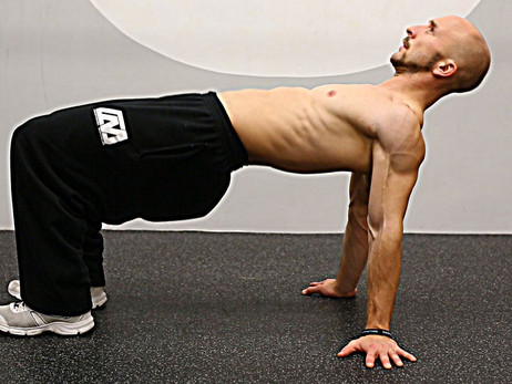 The Reverse Plank: The One Exercise you need for Better Posture  & A Healthier Lower Back
