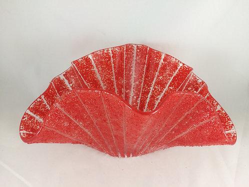 Red Sea Fan Vessel