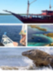 Scuba dive sites map - East Lombok Dive Hotel - Eastern Gilis Sumbawa Bali Indonesia
