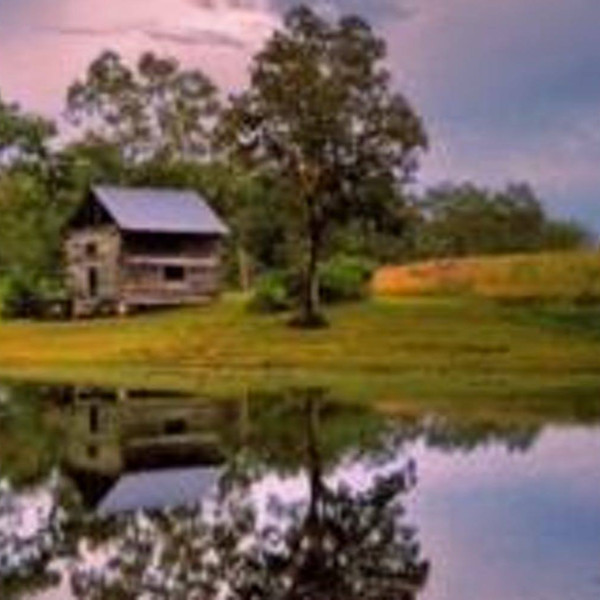 Cabin and Pond