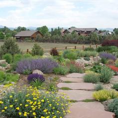 xeriscape-garden-path-j-s-landscape_8732