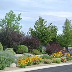 Commercial Landscape Maintenance 3.jpg