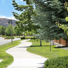 Commercial Landscape Maintenance 4.jpg