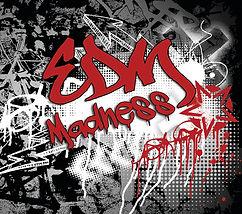Kitt Wakeley EDM Madness album